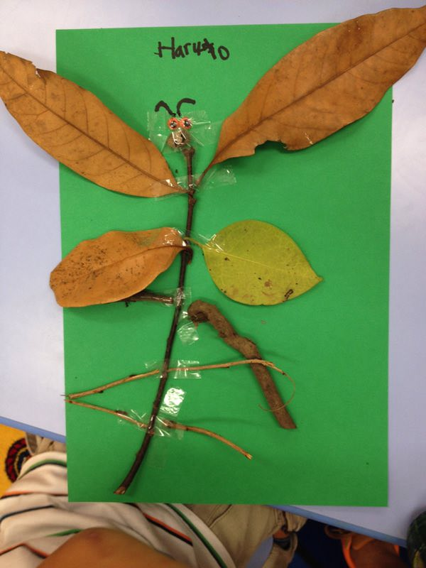 leaf and twig craft
